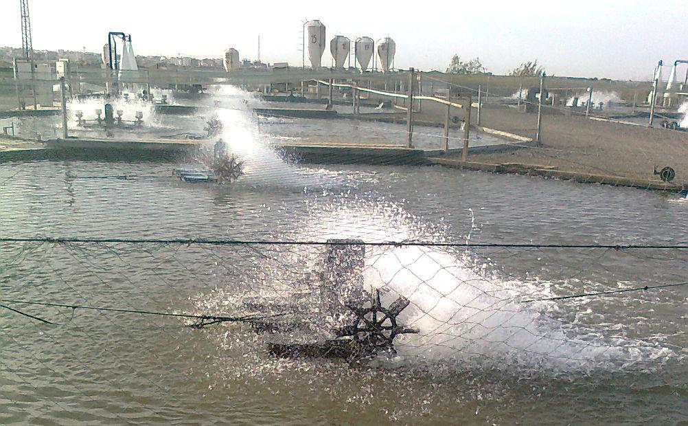Aqwise - Aquaculture - image 1